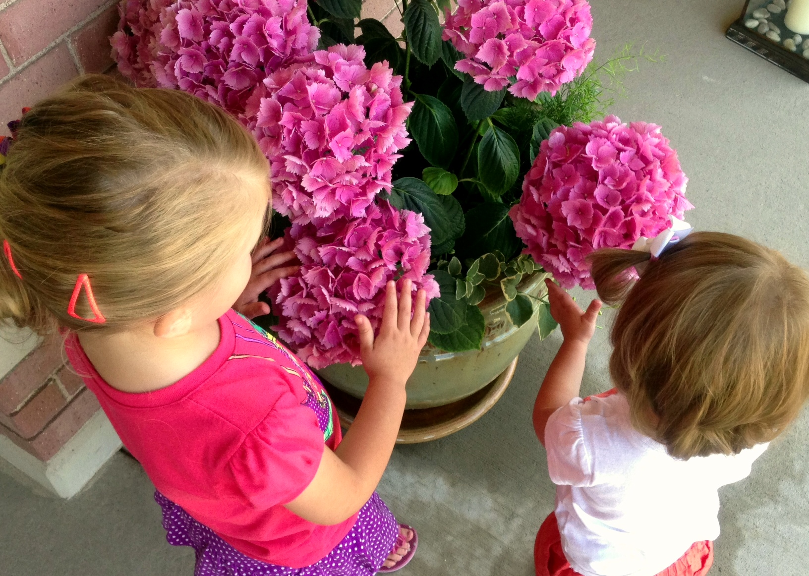 Watering Grandma's flowers!