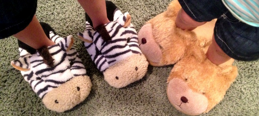 zebra slippers www.mytributejournal.com