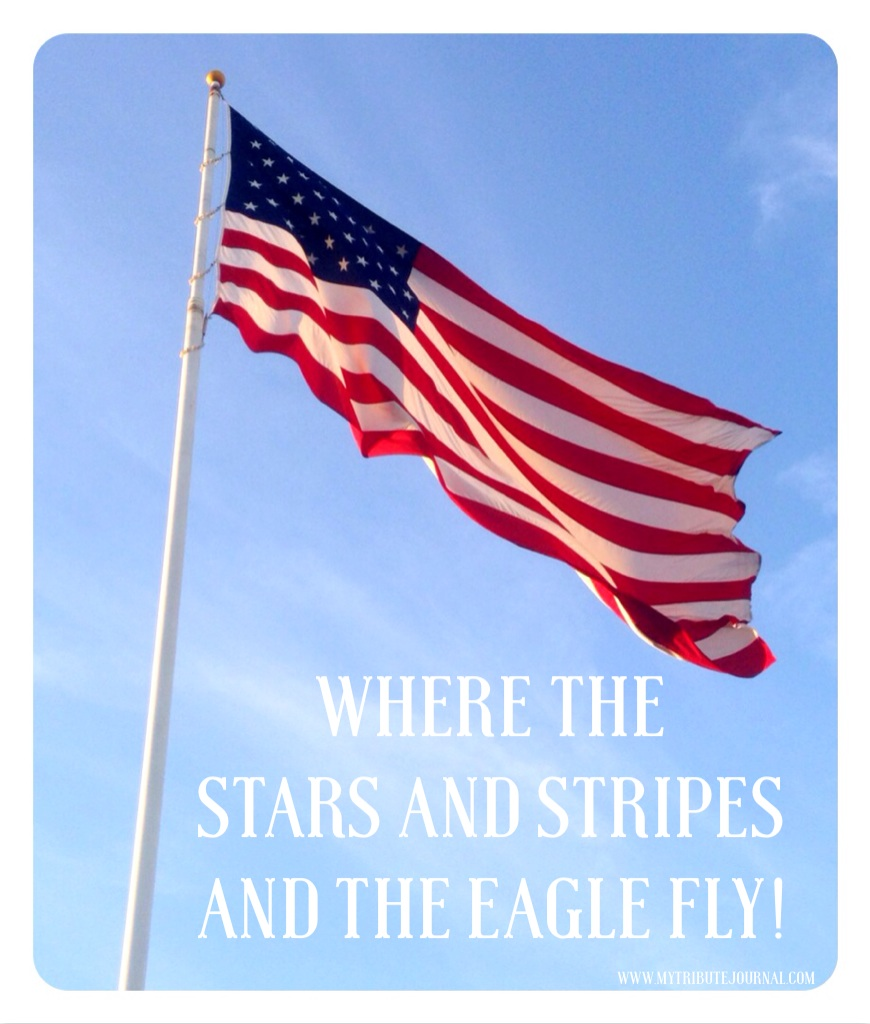 America's flag--Where the Stars And Stripes and the Eagle Fly! www.mytributejournal.com