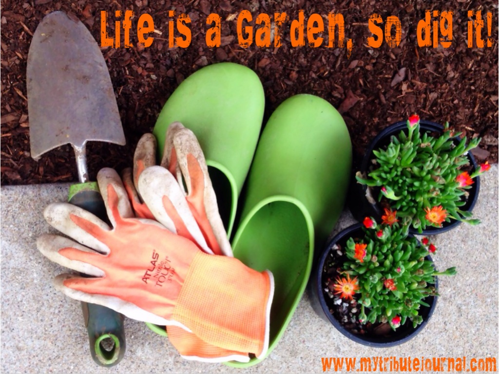 Life Is A Garden, So Dig It!  www.mytributejournal.com