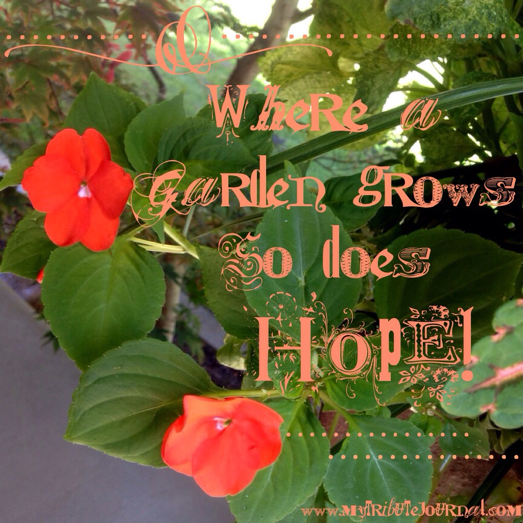 "Garden quotes: ""Where A Garden Grows So Does Hope!"" www.mytributejournal.com"