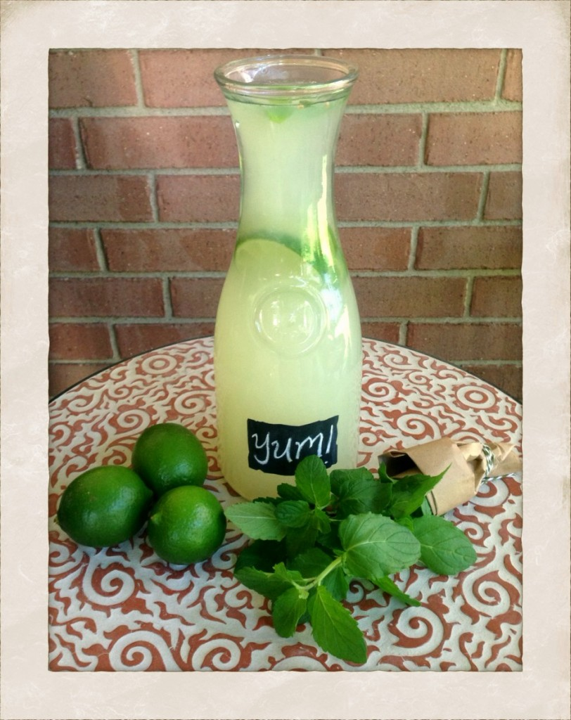 Mint Limeade Recipe! www.mytributejournal.com