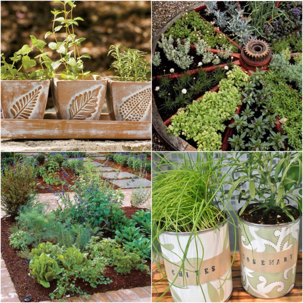 Garden Therapy! Planting Herbs! www.mytributejournal.com
