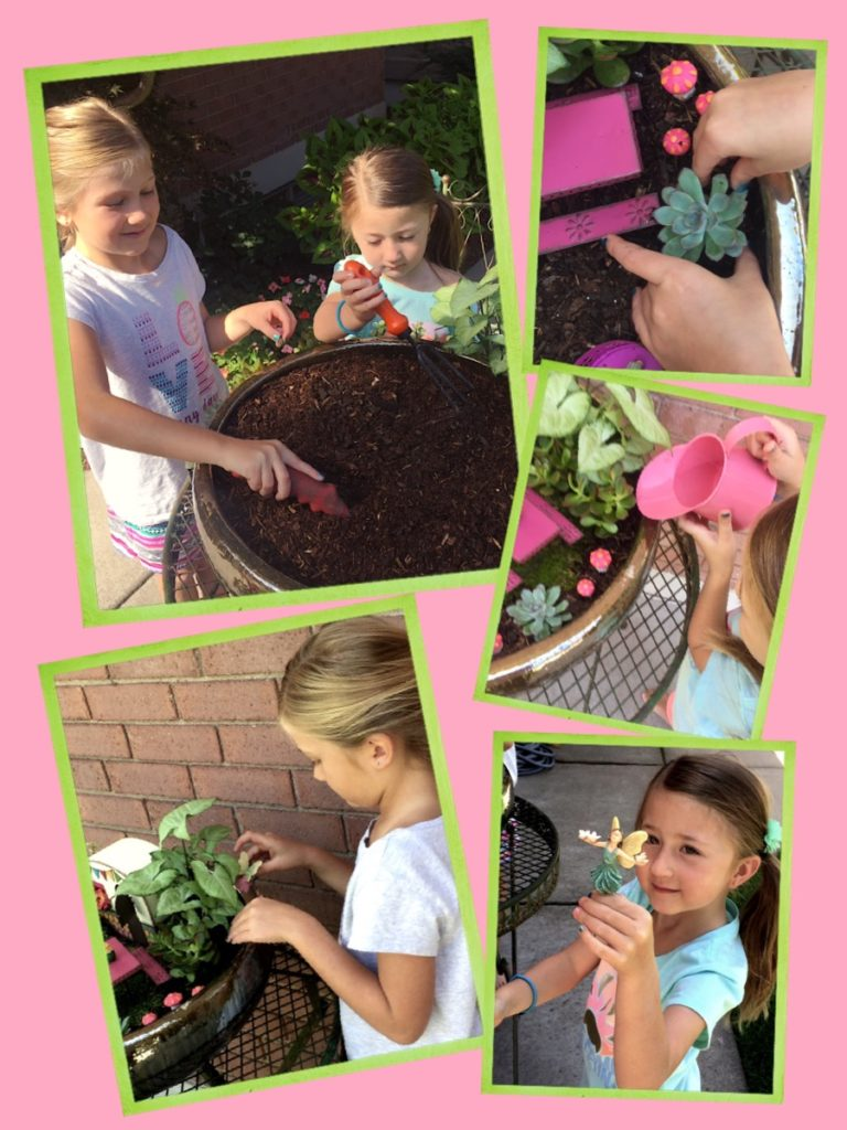 Making a fairy garden.