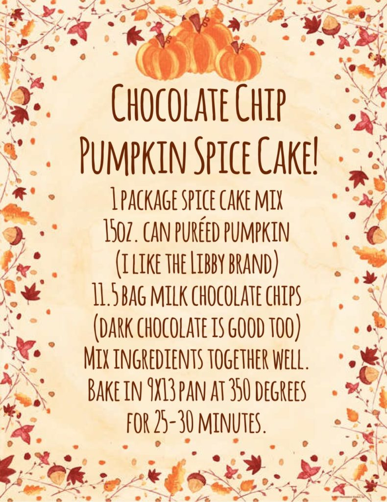 Chocolate Chip Pumpkin Spice Cake recipe!