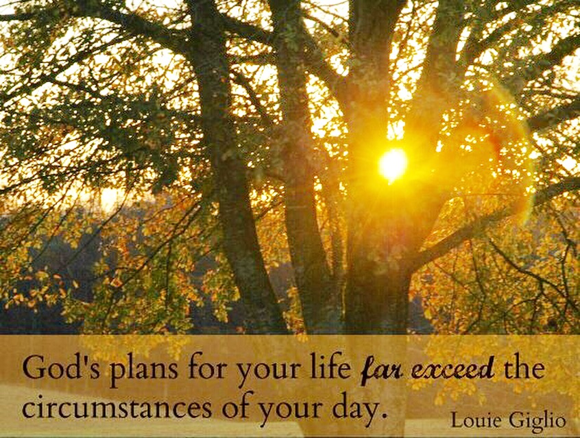 God's plan for you quote.